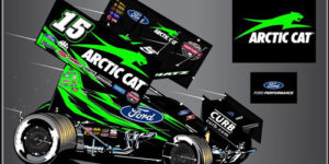 Cat Colors for Schatz